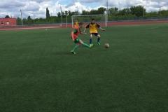 Кожаный мяч (2)