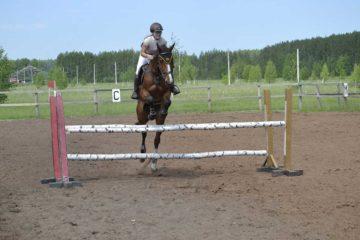 прошли ежегодные соревнования по конному спорту